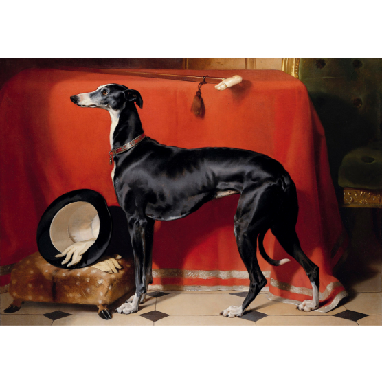 Pocztówka Sighthounds in Art No. 9
