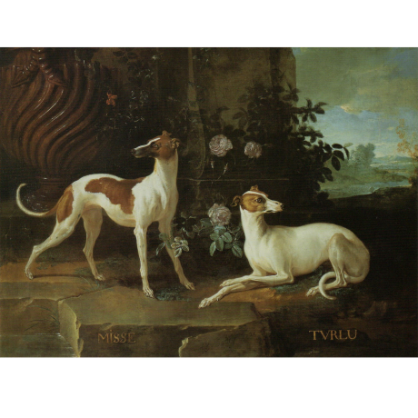 Pocztówka Sighthounds in Art No. 1
